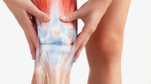 Restore cartilage in the joints